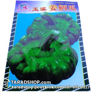 เมล็ดผัก ฟักทองเขียว (ชนิดซอง)