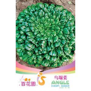 เมล็ดพันธุ์ดอกไม้ (จาน Wuta) ชนิดซอง)