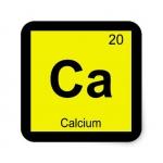 Calcium/แคลเซียม
