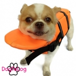 เสื้อชูชีพสุนัข Dogtalog แบบมีรองคอถอดได้ : สีส้ม
