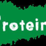 Protein/โปรตีน