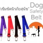 เข็มขัดนิรภัยสำหรับสุนัข