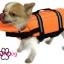 เสื้อชูชีพสุนัข Dogtalog แบบมีรองคอถอดได้ : สีส้ม thumbnail 11