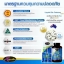 Auswelllife Liquid Bio Calcium Plus Vitamin D3 ลิควิดแคลเซียม เสริมสร้างมวลกระดูก สำเนา thumbnail 8