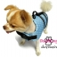 เสื้อชูชีพสุนัขแบบโฟมรอบตัว เบอร์ S thumbnail 3