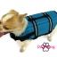 เสื้อชูชีพสุนัข Dogtalog แบบมีรองคอถอดได้ : สีฟ้า thumbnail 5