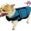 เสื้อชูชีพสุนัข Dogtalog แบบมีรองคอถอดได้ : สีฟ้า thumbnail 2