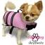 เสื้อชูชีพสุนัขแบบโฟมรอบตัว เบอร์ S thumbnail 2