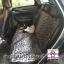 ผ้าปูกันเปื้อนในรถยนต์ : สีเทาลายหมา thumbnail 4