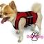 เสื้อชูชีพสุนัขแบบเสื้อกล้าม เบอร์ 3 thumbnail 3