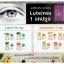 Luteines ลูทิเนส อาหารเสริมบำรุงสายตา ดูแล และฟื้นฟูจอประสาทตา thumbnail 6