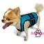 เสื้อชูชีพสุนัขแบบเสื้อกล้าม เบอร์ 3 thumbnail 7