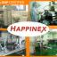 Happinex (แฮปไพเน็ก) ผลิตภัณฑ์เสริมอาหารจากสมุนไพรธรรมชาติ ช่วยลดอาการซึมเศร้า วิตกกังวล เครียด นอนไม่หลับ ปรับสมดุลของสารเคมีในสมอง thumbnail 7