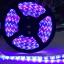 ไฟริบบิ้นสีสลับ LED 60 ดวง 5M 12V thumbnail 1