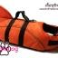 เสื้อชูชีพสุนัขแบบแฟนซี : ชุดฉลาม สีส้ม thumbnail 5