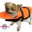 เสื้อชูชีพสุนัข Dogtalog แบบมีรองคอถอดได้ : สีส้ม thumbnail 7