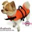 เสื้อชูชีพสุนัขแบบแฟนซี : ชุดฉลาม สีส้ม thumbnail 4