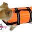 เสื้อชูชีพสุนัข Dogtalog แบบมีรองคอถอดได้ : สีส้ม thumbnail 9