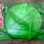 เมล็ดผัก หัวกระล่มปี่ สวน