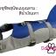 เสื้อชูชีพสุนัขแบบแฟนซี : ชุดฉลาม สีน้ำเงินเทา thumbnail 2