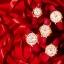 นาฬิกา คาสิโอ Casio SHEEN RED COLOR SERIES รุ่น SHE-5023GL-7B ของแท้ รับประกัน1ปี thumbnail 3