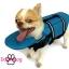 เสื้อชูชีพสุนัข Dogtalog แบบมีรองคอถอดได้ : สีฟ้า thumbnail 4