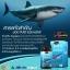 Auswelllife Pure Squalene Tasmanian 1000 mg น้ำมันตับปลาฉลาม thumbnail 1