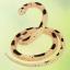 งูยางสำหรับไล่นก thumbnail 9