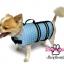 เสื้อชูชีพสุนัขแบบโฟมรอบตัว เบอร์ S thumbnail 5
