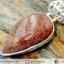กระดูกไดโนเสาร์ Agatized Dinosaur Bone- จี้เงินแท้ 925 (4.8g) thumbnail 2