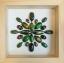 """++ Beetle Art 6x6"""" แมลงสต๊าฟรูปแบบศิลปะในกล่องไม้พรีเมี่ยม ++ thumbnail 1"""