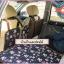 ที่นอนในรถ ลายพอลแฟรงค์ สีน้ำเงินเข้ม thumbnail 2
