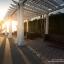 #ขายบ้านเดี่ยวชะอำหัวหิน โครงการ Boulevard Tuscany(บูเลอวาร์ด ทัสคานี)เฟอร์เกรดAAAโซนติดทะเล ราคาถูกกว่าโครงการ ขายด่วน thumbnail 54