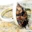 ลาบราโดไรต์ Labradorite Copper แหวนเงินแท้ 925 (แหวนเบอร์ : 61 ,4.8g) thumbnail 4