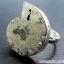ไพไรต์แอมโมไนต์ Pyrite Ammoniteแหวนเงินแท้ 925 (แหวนเบอร์ : 56) thumbnail 1