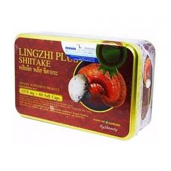 Lingzhi Plus Shiitake หลินจือ พลัส [VIP 790 บาท]