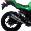 Kawasaki 250-300 Series's Exhaust Full Carbon by Termignoni thumbnail 4