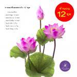 ดอกบัวหลวงประดิษฐ์ ขนาดใหญ่ 12 ชุด สีชมพู