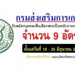 กรมส่งเสริมการเกษตร รับสมัครสอบพนักงานราชการ 9 อัตรา วันที่ 19 - 25 มิถุนายน 2561