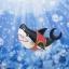 Shirahoshi ของแท้ JP แมวทอง - Chibi Studio [โมเดลวันพีช] (Rare) thumbnail 6