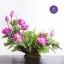 Artificial Lotus Flowers จำหน่ายดอกบัวประดิษฐ์ เป็นชุด เป็นช่อ เป็นดอกบัวหลวงปลอมขนาดใหญ่ (เท่าดอกบัวจริง) จำนวน 1 ชุด ลูกค้านิยมซื้อไปทำบุญถวายวัด ถวายพระ หรือประดับโต๊ะหมู่บูชา thumbnail 13