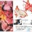 Nami ของแท้ JP แมวทอง - Banpresto Creator x Creator [โมเดลวันพีช] thumbnail 4