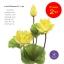 จำหน่ายดอกบัวประดิษฐ์เป็นชุดสำหรับจัดแจกัน เป็นดอกบัวหลวงปลอมขนาดใหญ่ (เท่าดอกบัวจริง) จำนวน 2 ชุด thumbnail 3