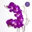 HAAR170003 Phalaenopsis1 ORC : แจกันดอกไม้ประดิษฐ์ ดอกกล้วยไม้ฟาแลนนอฟซิส thumbnail 4