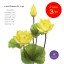 จำหน่ายดอกบัวปลอมเป็นชุดสำหรับจัดแจกัน เป็นดอกบัวหลวงปลอม ขนาดใหญ่ (เท่าดอกบัวจริง) จำนวน 3 ชุด thumbnail 1