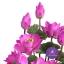 แจกันดอกบัวประดิษฐ์แฮนดิท็อพ เพื่อบูชาพระ ถวายวัด หรือเป็นของขวัญขึ้นบ้านใหม่ ดอกบัวหลวงขนาดใหญ่ 12 ดอก thumbnail 2