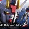 Aile Strike GunDam RG