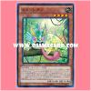 TRC1-JP025 : Masked Chameleon / Chamenleon (Collectors Rare)