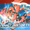 AEU Enact Custom Type