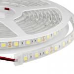 ไฟใต้น้ำ LED Strip 5050 60LED/m IP68 Single 5m.